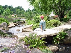 Toowoomba QLD. Jap Gardens
